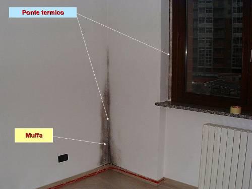L'umidità di risalita nei muri e la muffa: cause, soluzioni e rimedi