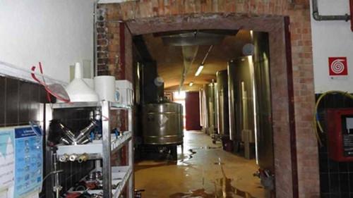Risanamento muffe e infiltrazioni in enoteca a Priocca (Cn)
