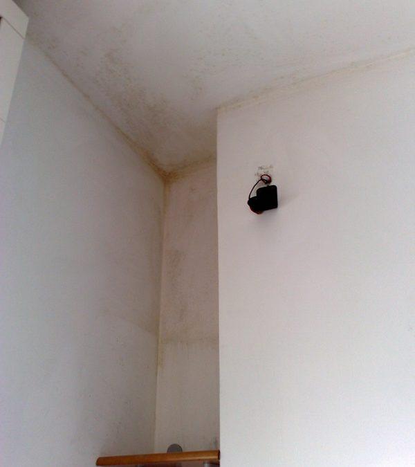 Ventilazione forzata per eliminare muffe a Collegno