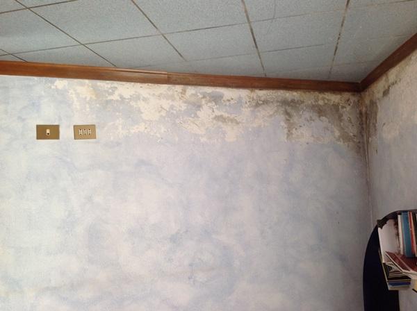 Umidità di risalita in una casa privata di Santena