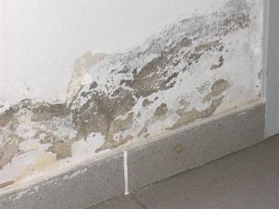 Umidit di risalita o ascendente prodotti e soluzioni - Umidita nei muri interni soluzioni ...