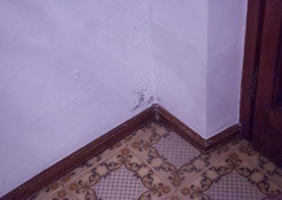 muffa-pavimento2