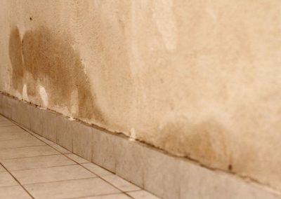 umidita-risalita-cantina12