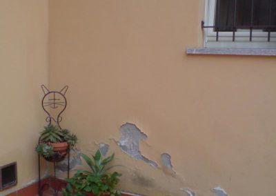 umidita-risalita-casa-nuova13
