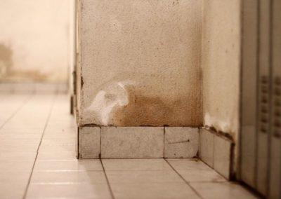 umidita-risalita-muro-esterno10
