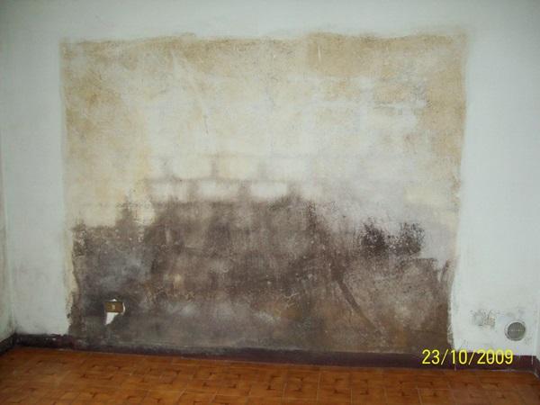 Rimozione muffe da condensa a Volpiano con ventilazione forzata